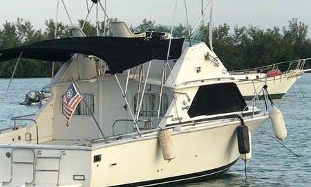 28' Bertram Cuddy Cabin/Walk Around Yacht in Olympia Heights
