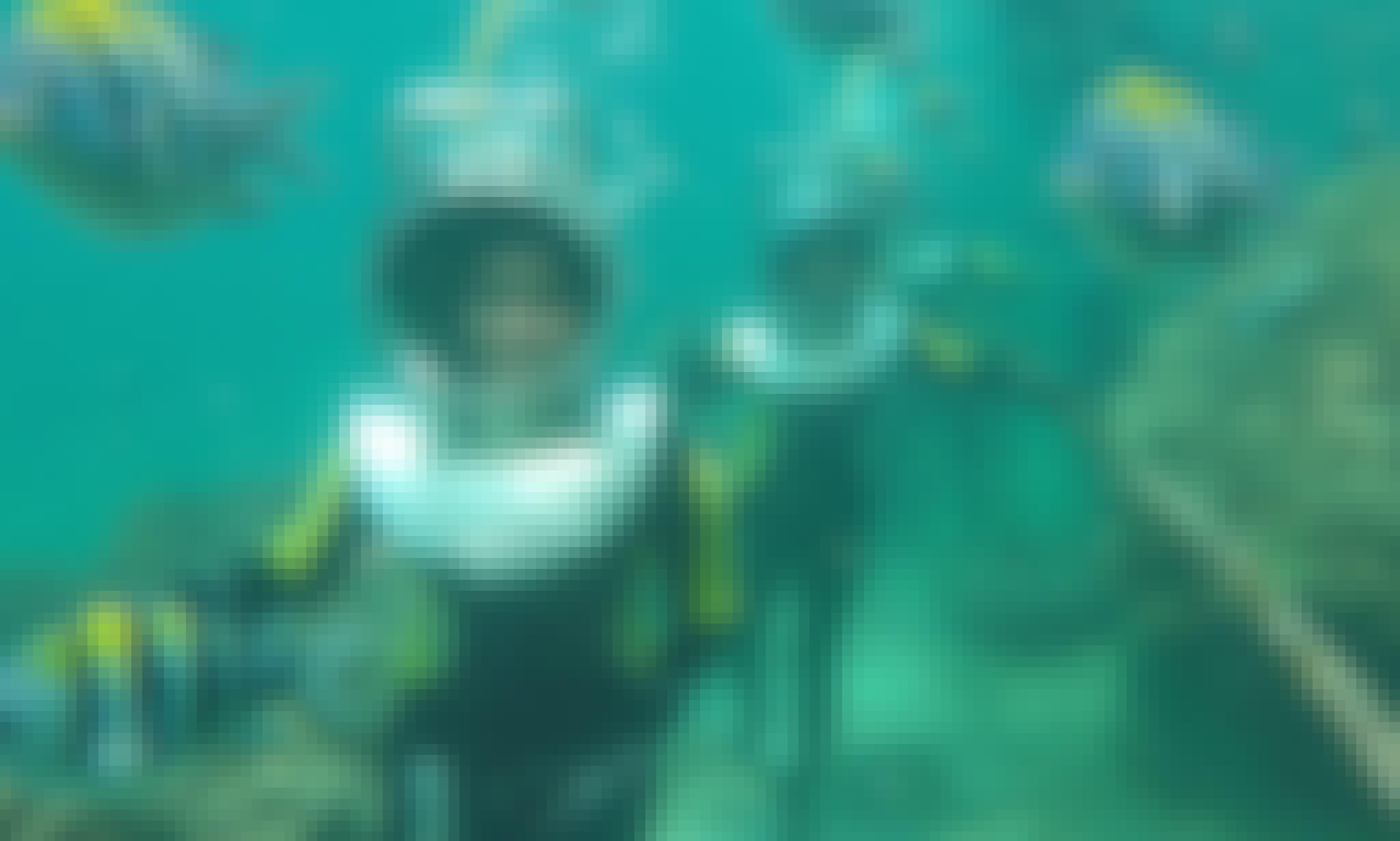 Discover Under Water Beauty By Sea Walking In Kuta Selatan, Indonesia