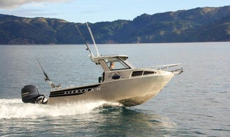 Dive Experience, Scenic Charters or Fishing Trips in Nelson, NZ
