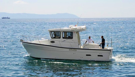 Fishing Charter On Tr 29 Cuddy Cabin In Napoli, Campania With Captain Vincenzo