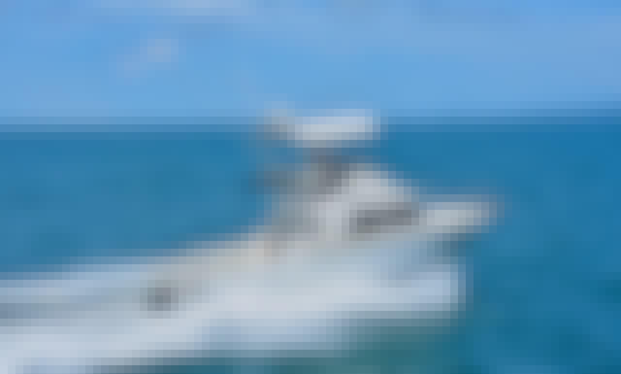 BERTRAM 28 / Fishing Boats rental in Puerto Vallarta