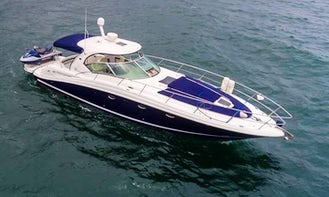 SeaRay 42 Luxury Motor Yacht Charter in Puerto Vallarta, Jalisco