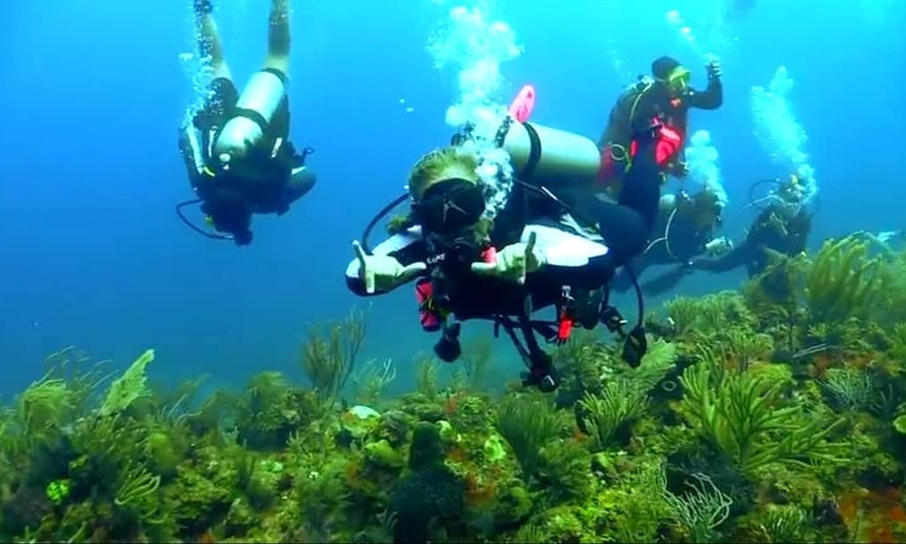 Amazing Private Scuba Lessons with Certified Instructors in Adana, Turkey