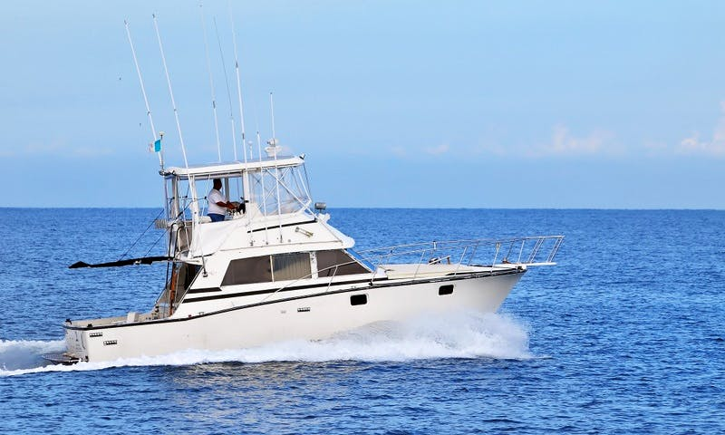 BERTRAM 38 / Fishing Boats rental in Puerto Vallarta
