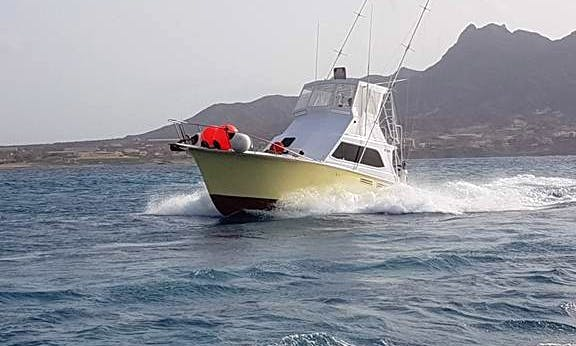 Marina Mindelo, 40 ft Pacemaker Sportsfisherman Rental for 8 People