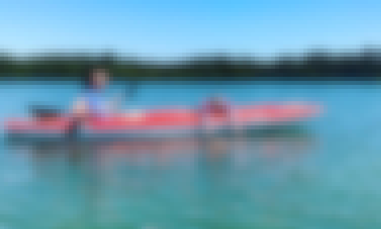 Pelican 10 Single Kayak Rental and St. John's Pass and Shell Key Preserve Kayak Tour
