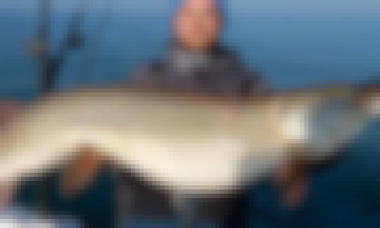 26' Penn Yan Flybridge for Family Fishing Adventure in Lake Erie