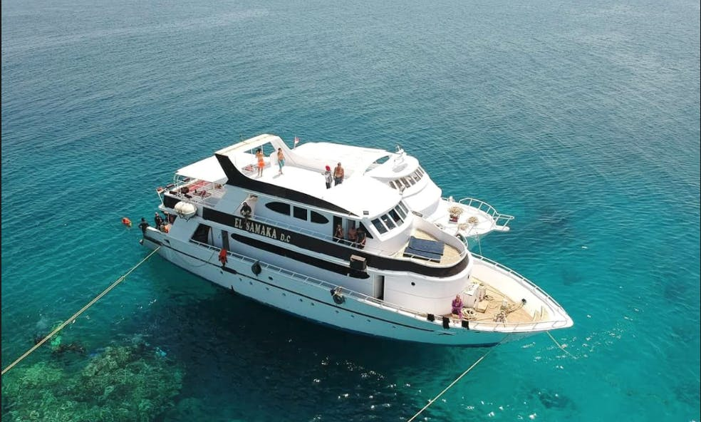 Experience A Quality Diving Trip With Us!