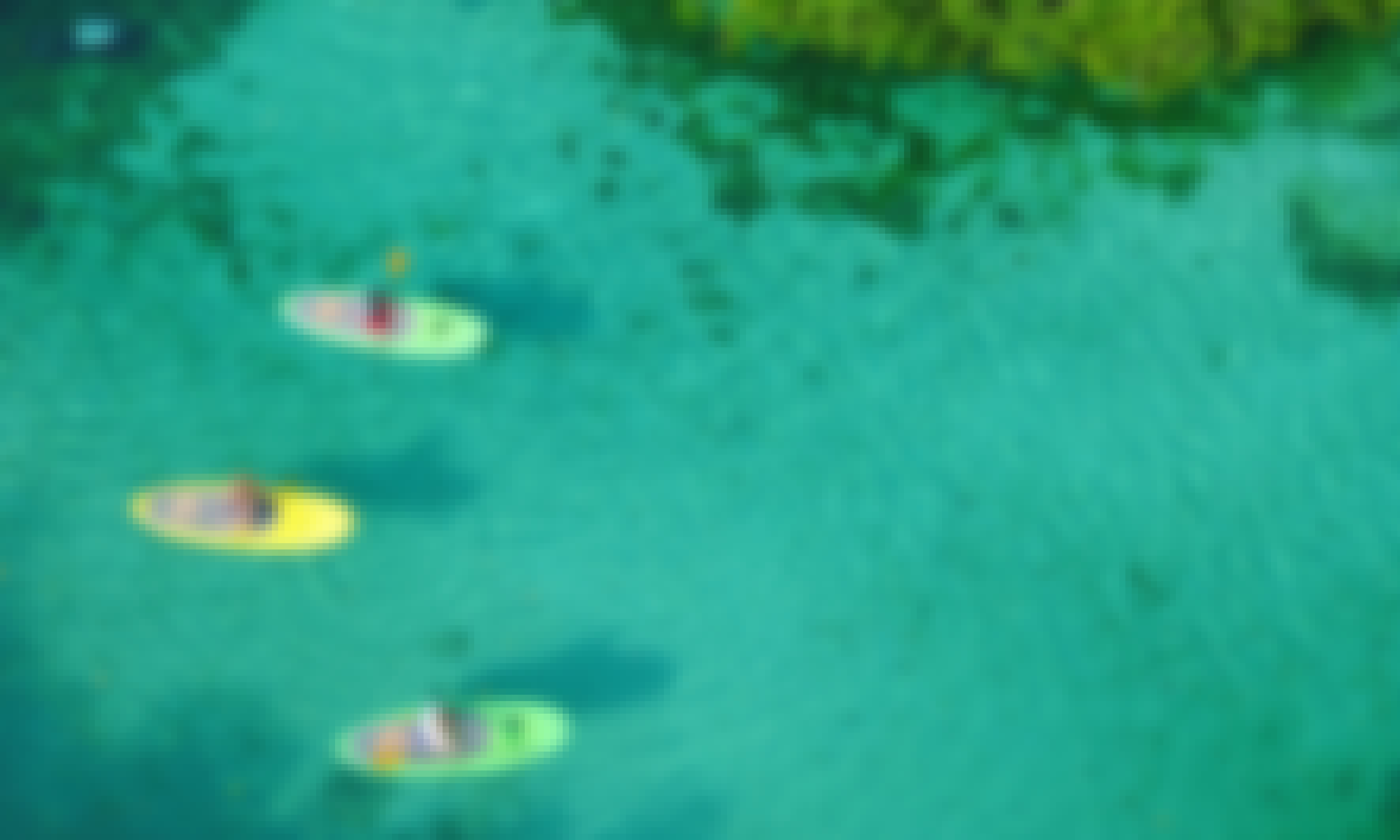 Paddleboard and Snorkel in Cenote, Lagoons and Ocean  Discover Tulum