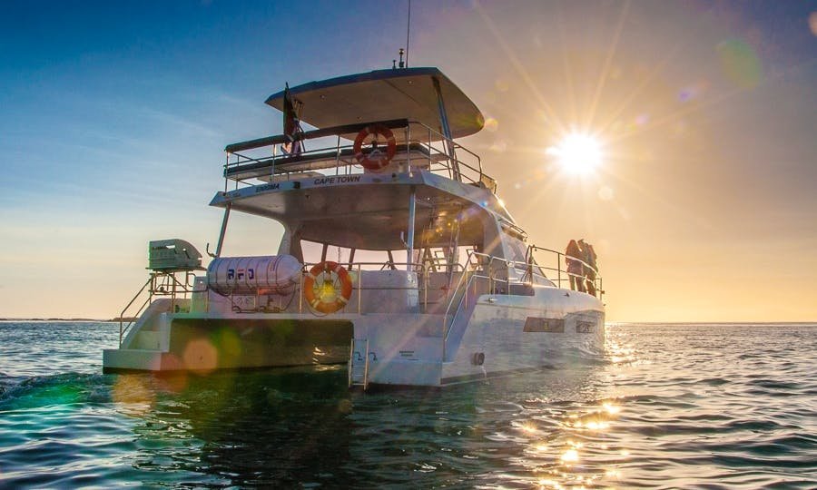 Luxury Catamaran for Private Charter in Cape Town, South Africa