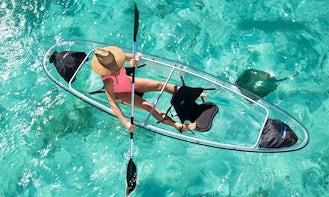 Guided Clear Kayak Tour for 3 Hours in Key West, Florida