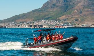 Spectre: RIB for Private Charter hire Cape Town