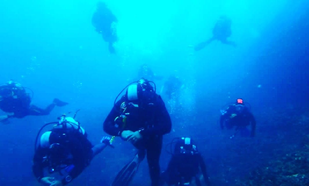 Enjoy Diving with Experienced Divers In Tyulenovo, Bulgaria