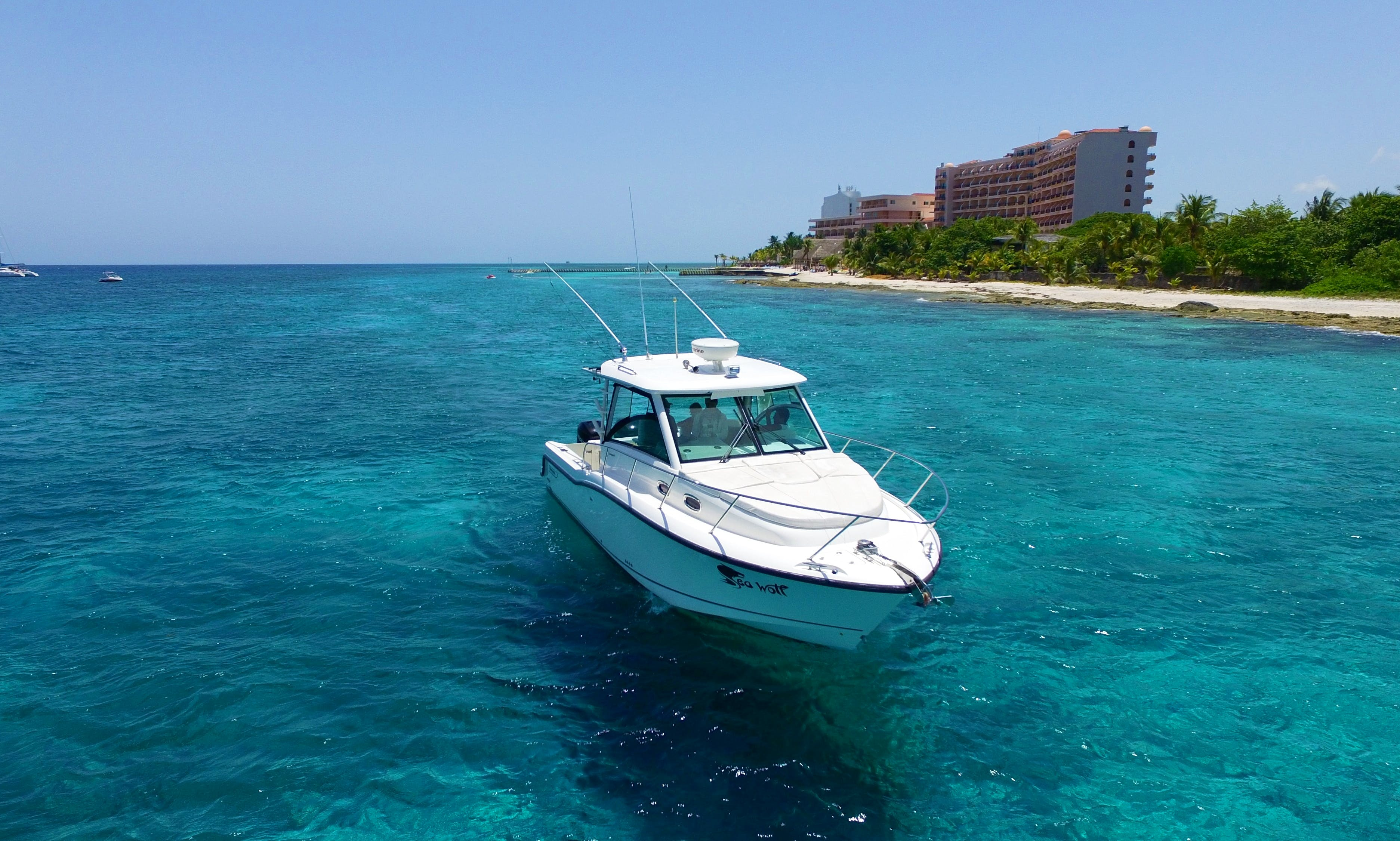 Exclusive Boat Tour in El Cielo, Cozumel Island onboard 33' Boston Whaler for 8 passengers