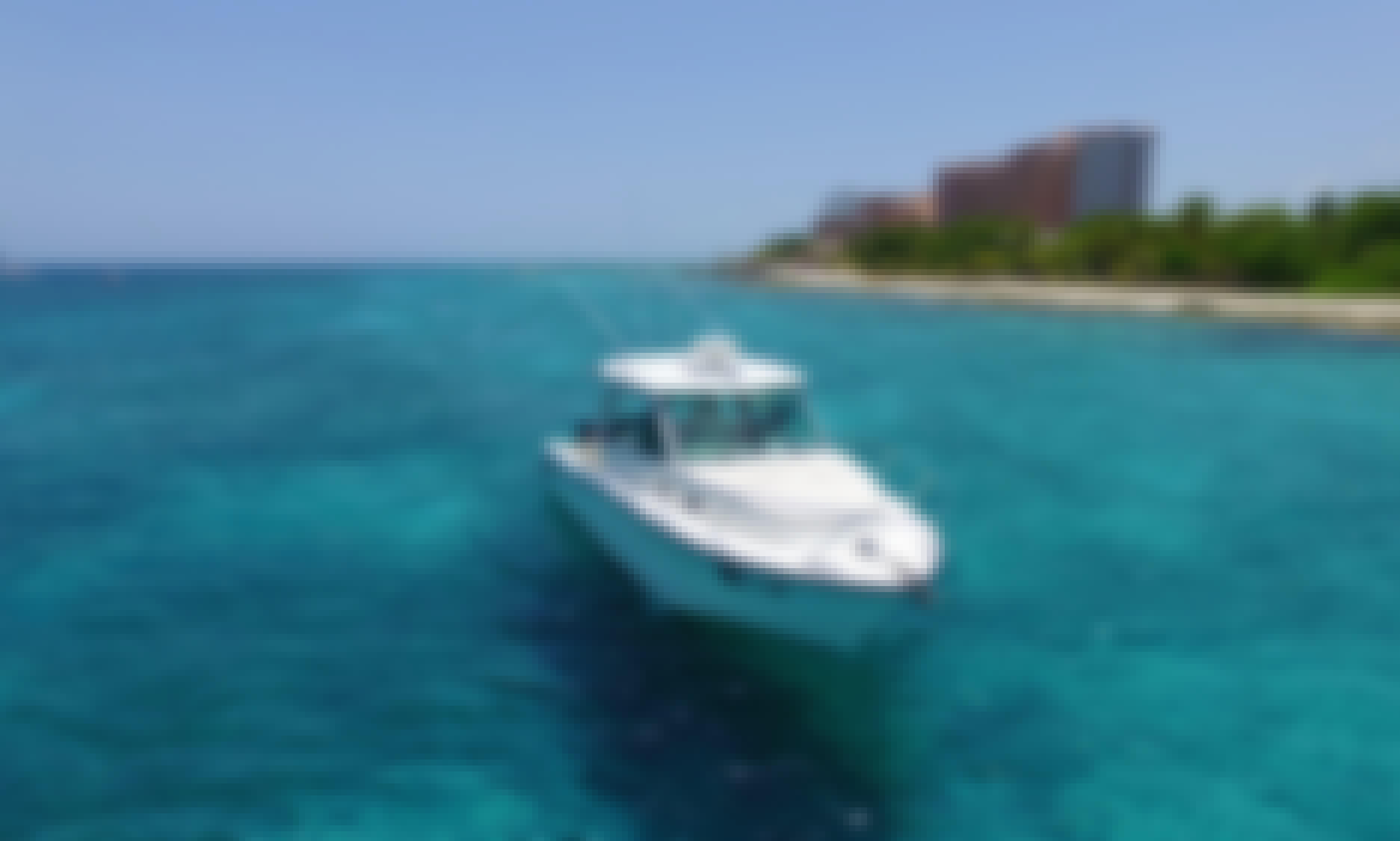 Exclusive Boat Tour in El Cielo, Cozumel Island onboard 37' Boston Whaler for 10 passengers