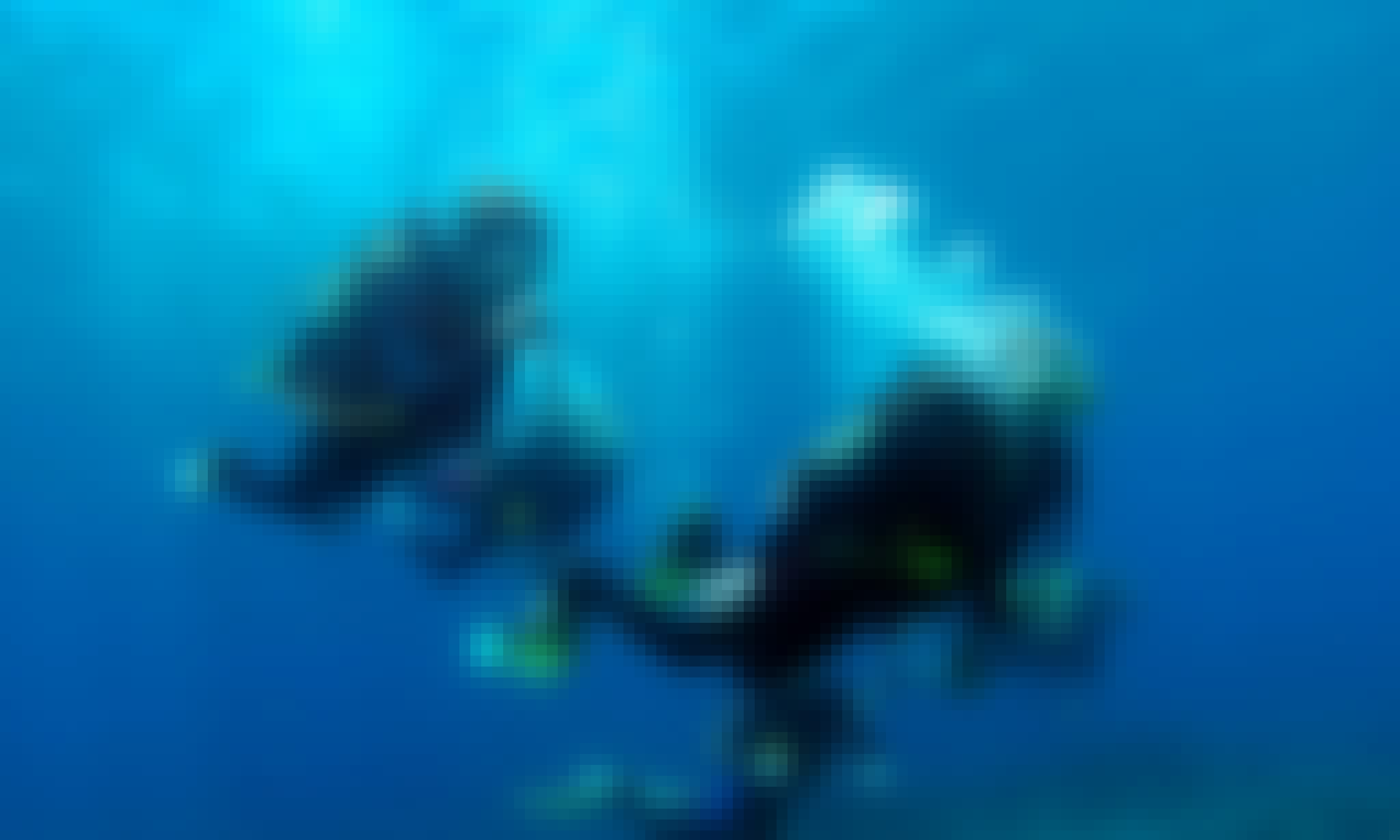 Dive Boat Charter for 12 Divers in Paphos, Cyprus