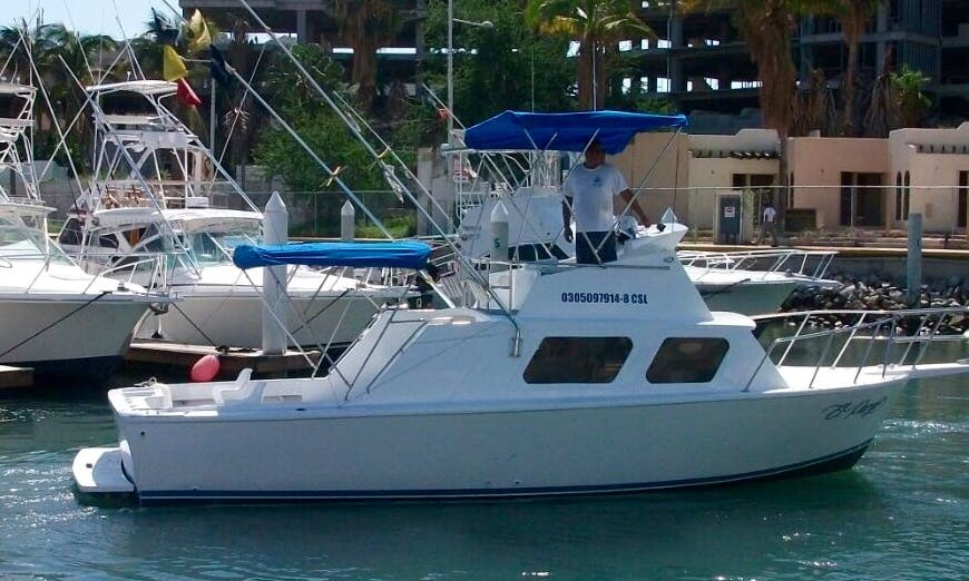 Book a Fishing Charter in Cabo San Lucas, Mexico for up to 8 Anglers