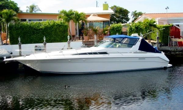 KnotMyBoat Charters - PERFECT For all occasions!
