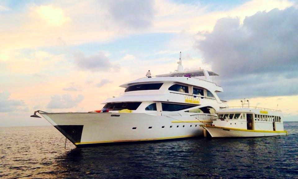 LiveAboard Diving Trip On MV Ari Queen Yacht In Malé, Maldives
