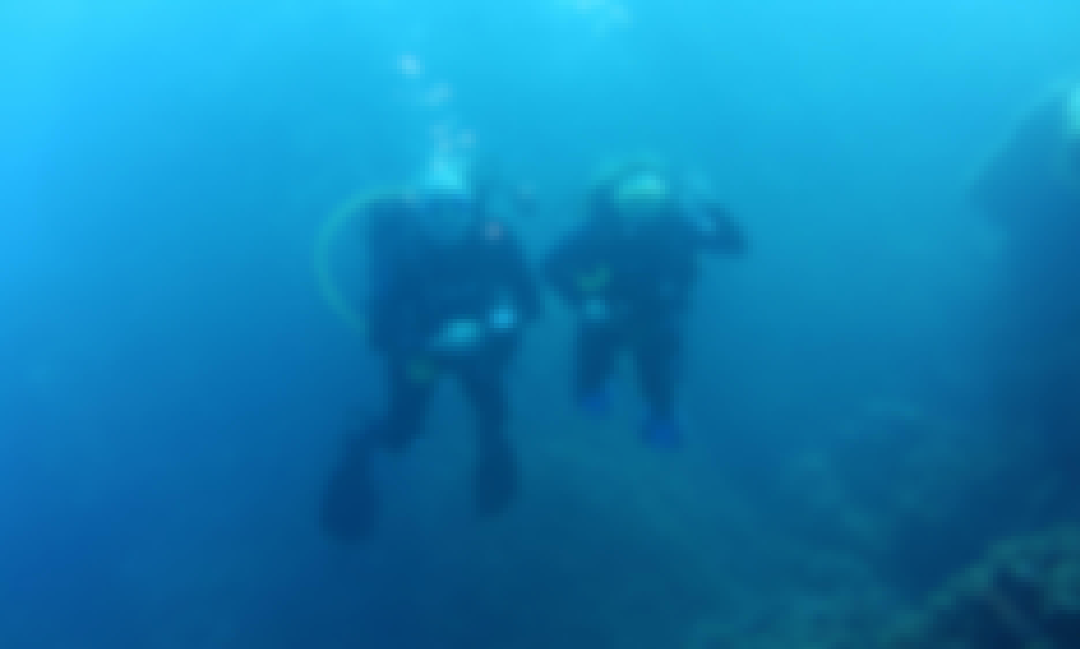 PADI Open Water Diver Course in Gent, Belgium