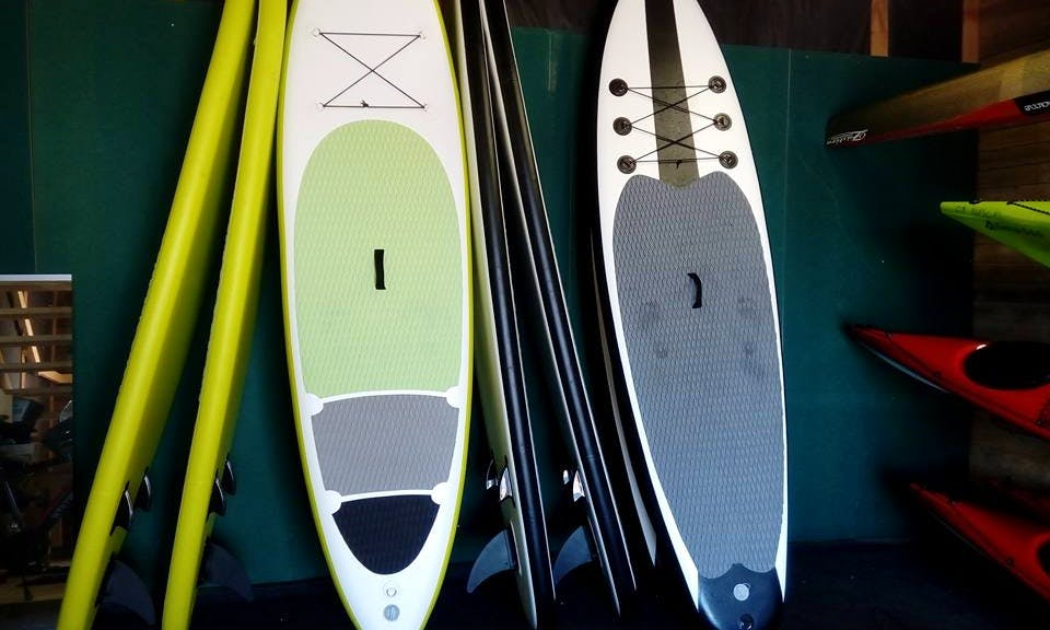 Stand Paddleboard Rental in Kuopio, Finland