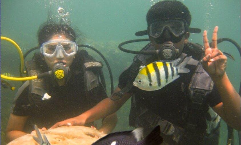 Scuba Diving in Nusa Dua