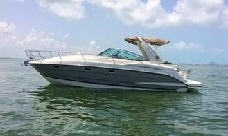 Crewed Charter on Monterrey 37ft  Motor Yacht in Cancún, Quintana Roo