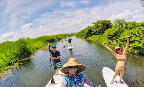 Guided Paddleboard Tour in Cabarete
