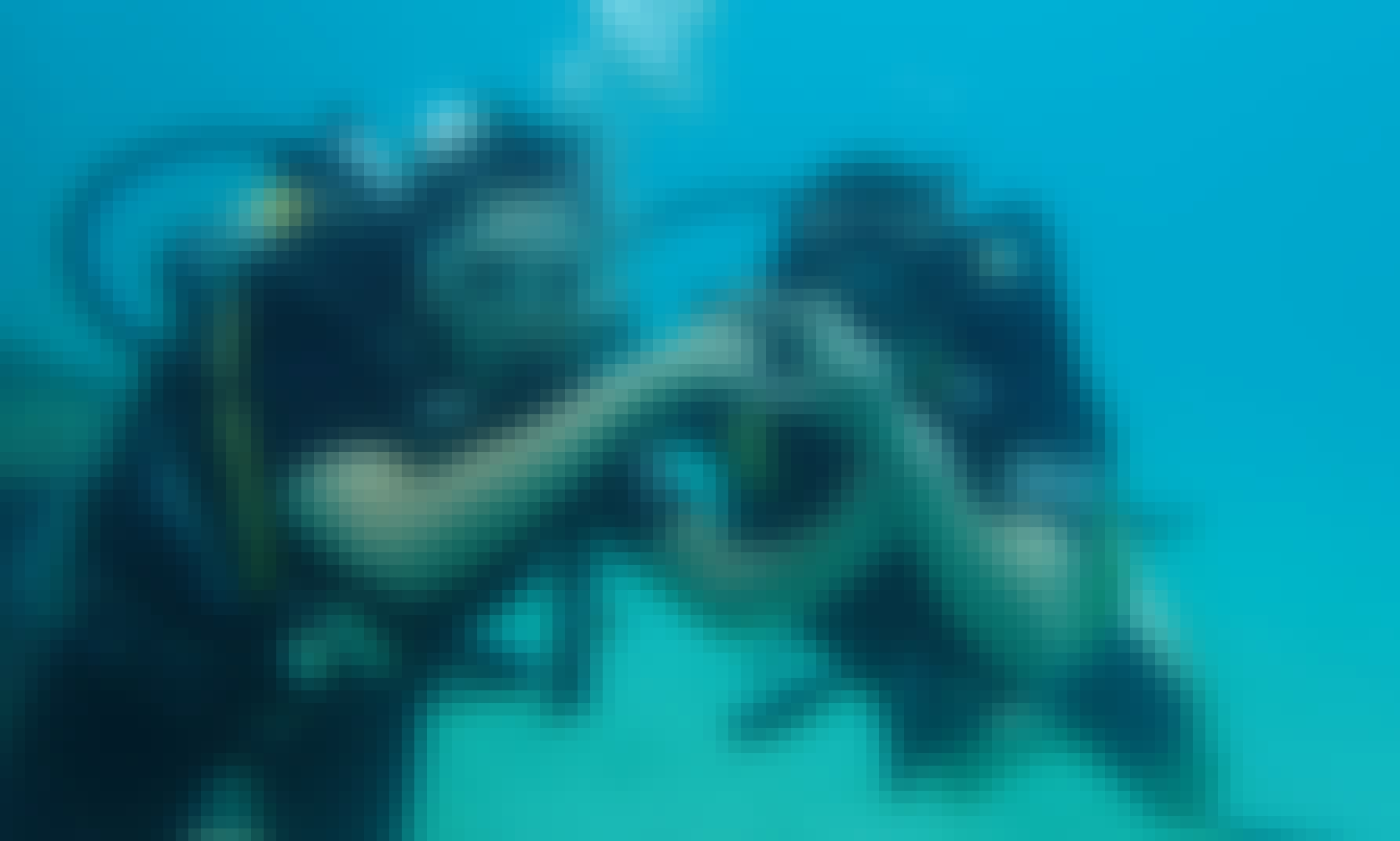 Diving in Samui for certified divers