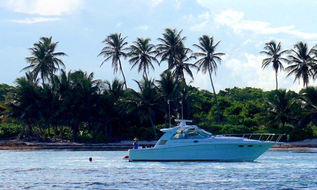 Sea Ray 40 ft Express Cruiser  rental in Punta Cana