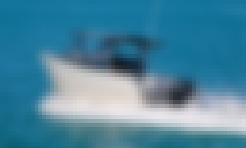 Phoenix Charters - Sport Fishing Vessel in Half Moon Bay Auckland