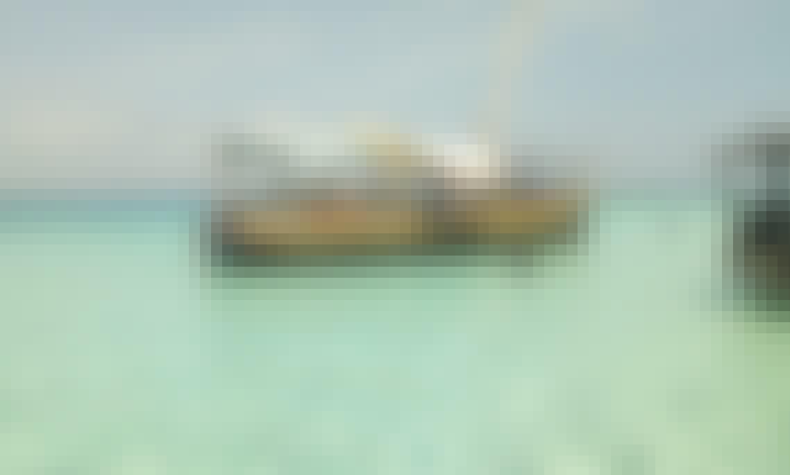Mnemba Island Snorkeling and Dolphin Tour Zanzibar