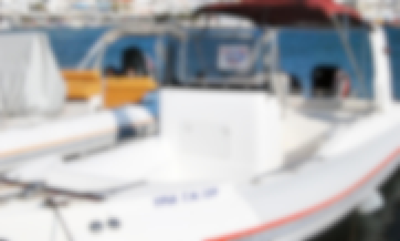 Yria 728 boat  RIB for Rent in Agia Anna Port, Naxos, Greece