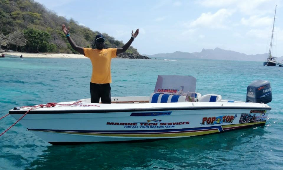 Custom Trips, Tours and Deliveries in the Grenadines
