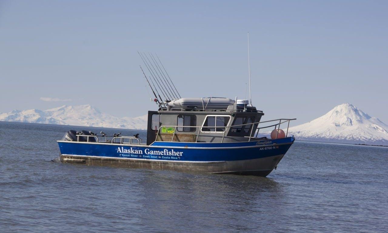 Alaska Bear Viewing Lake Clark National Park