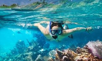 Kayak and Snorkeling Eco -Trips in Islamorada or Key West
