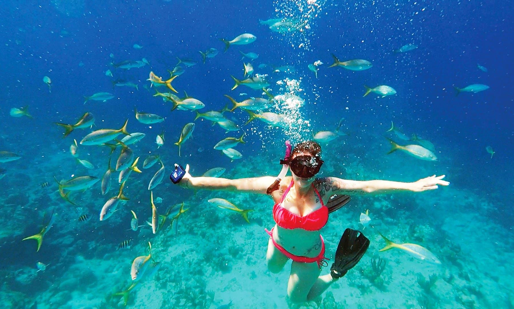 Snorkel the Grand Turk Wall, Turks & Caicos