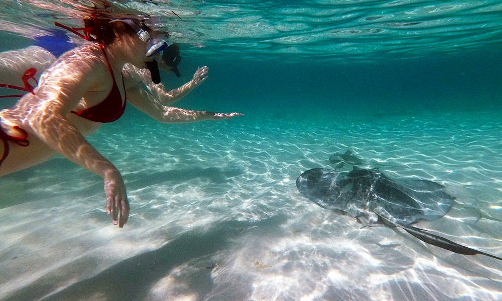 Stingrays & Snorkel Deluxe Tour in Turks and Caicos Islands