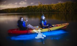 Bioluminescent Tours in Cayman Islands