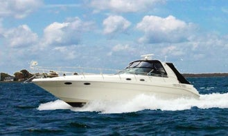 Enjoy the scenic routes of Washington DC on the Upper Potomac on this luxurious yacht with Captain Rod Patterson