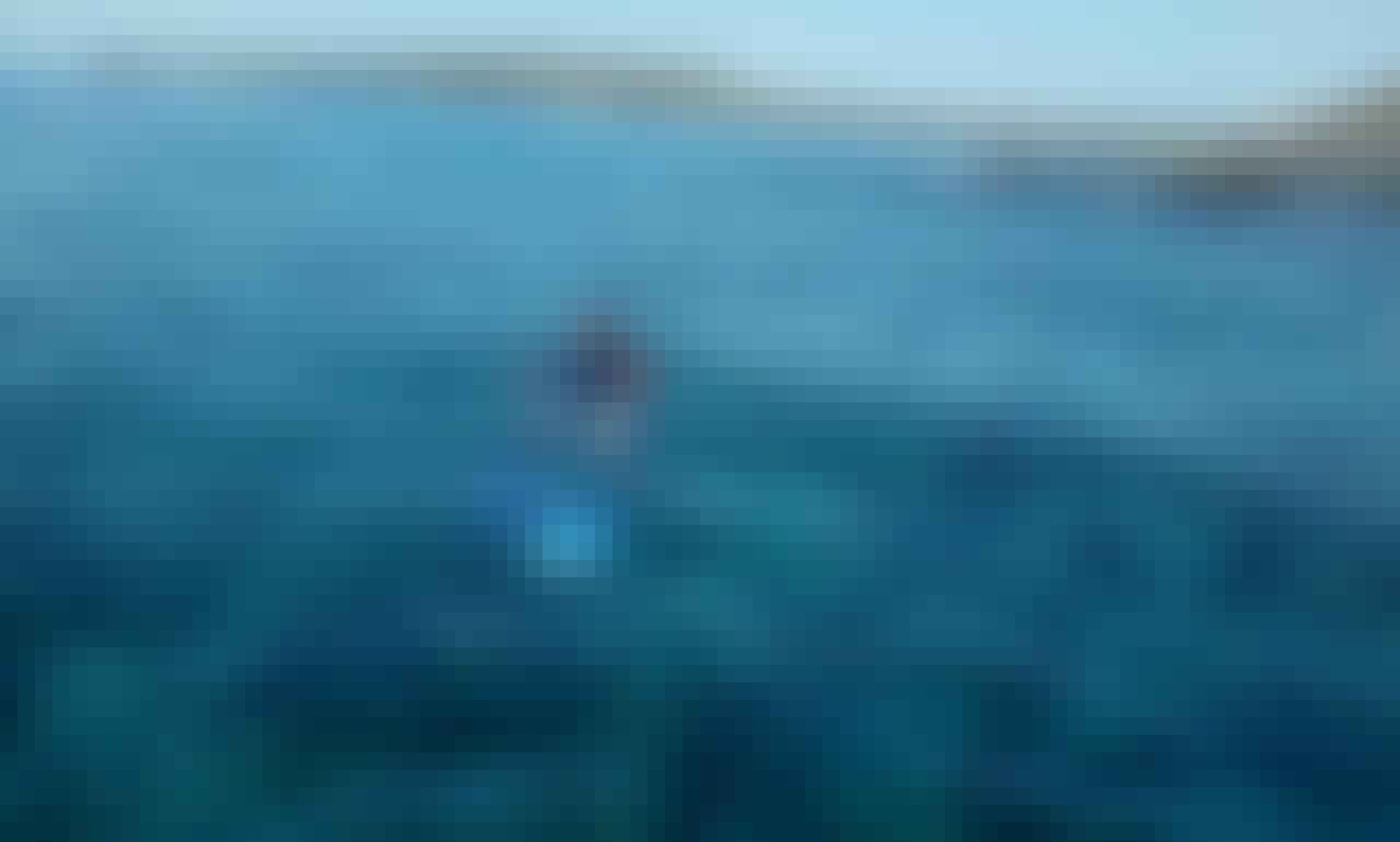 Snorkeling Adventure on Danzante Island of Loreto, Baja California Sur