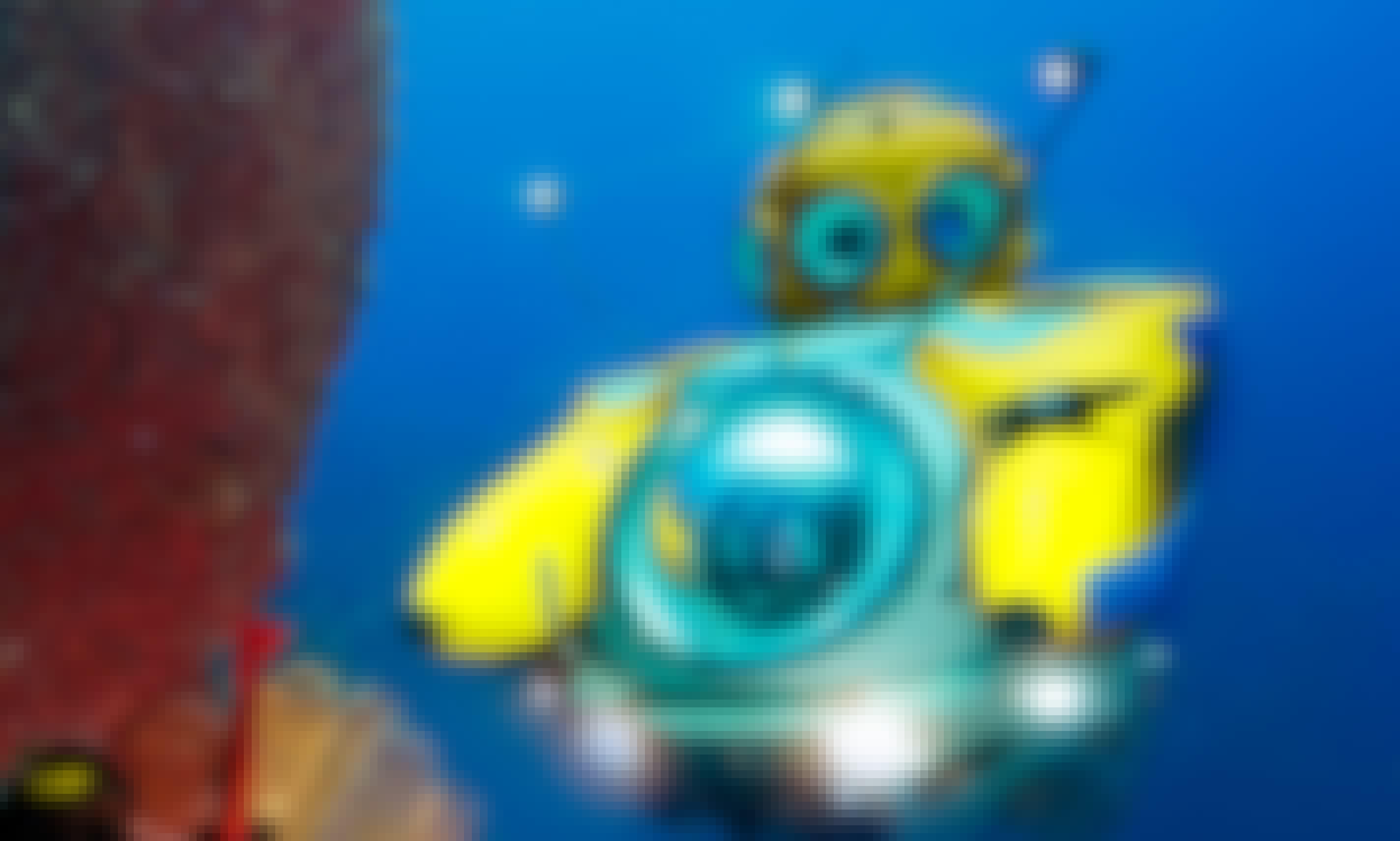 """Idabel"" Submersible Rental in West End, Bay Islands Department"