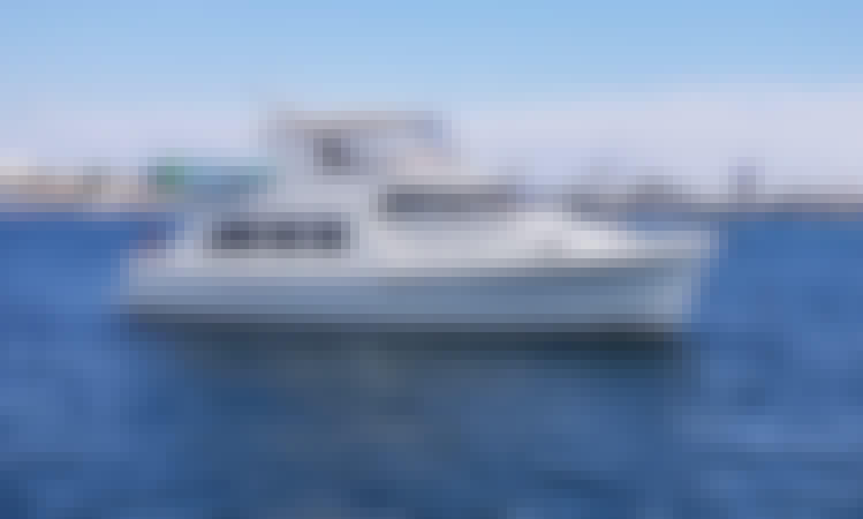 55' Luxury Hampton Pilothouse Yacht Cruise in San Diego
