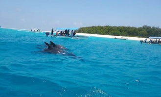 Dolphin and Snorkeling Trip on Mnemba Island