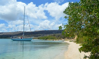 Curacao Experience, Spanish Waters, Snorkeling at the tugboat and fuik cruiseship pickup possible