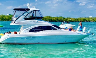 Charter 46' Sea Ray Luxury Sedan Bridge Motor Yacht
