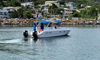 27' Kiwi Cat with Twin 230 Hp Mercury Motor Engine in Marigot, Saint Martin
