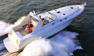 Sea Ray 450 Sundancer Motor Yacht in Faliraki, Greece