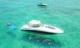 45' Sea Ray Sundancer Motor Yacht - water toys included: water carpet, Paddleboard , floating noodles, snorkeling goggles