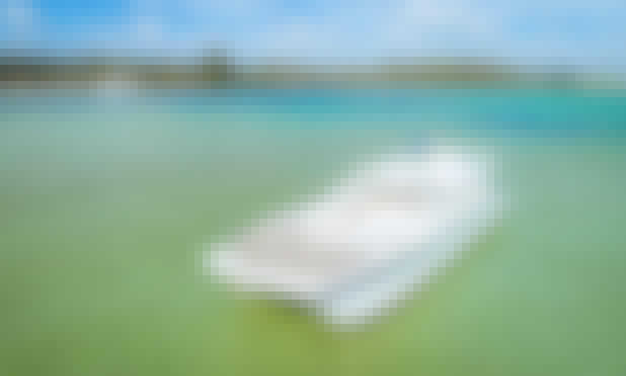 MC Catamaran Cruises in the Atlantic Ocean - Only $59 Per Person!